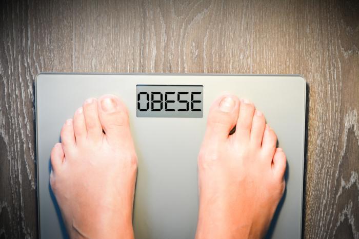 Fatores que causam a obesidade